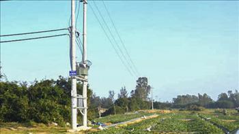 Thông tin phản hồi về việc nhiều hộ dân ở Quảng Ngãi hoang mang vì tiền điện tăng cao bất thường